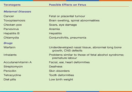 A List of teratogens and their effects on human health.